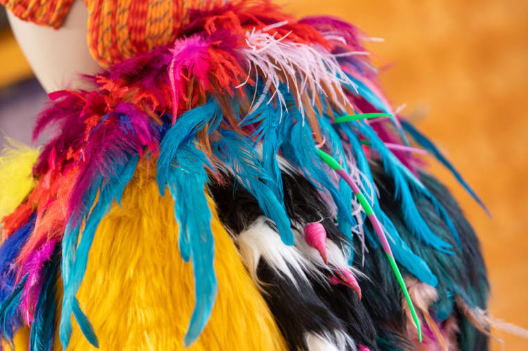 Close up, costume with feathers