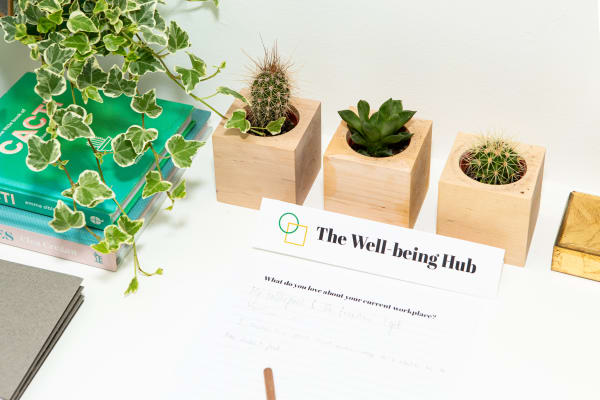 well-being-hub-design-management-gabriela-dittrichova.jpg