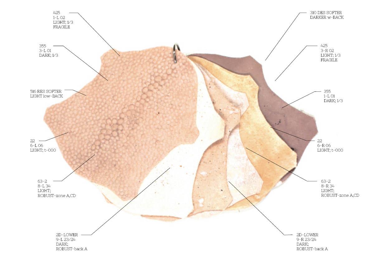 Pure-Human-0.01-Leather-Samples.jpg