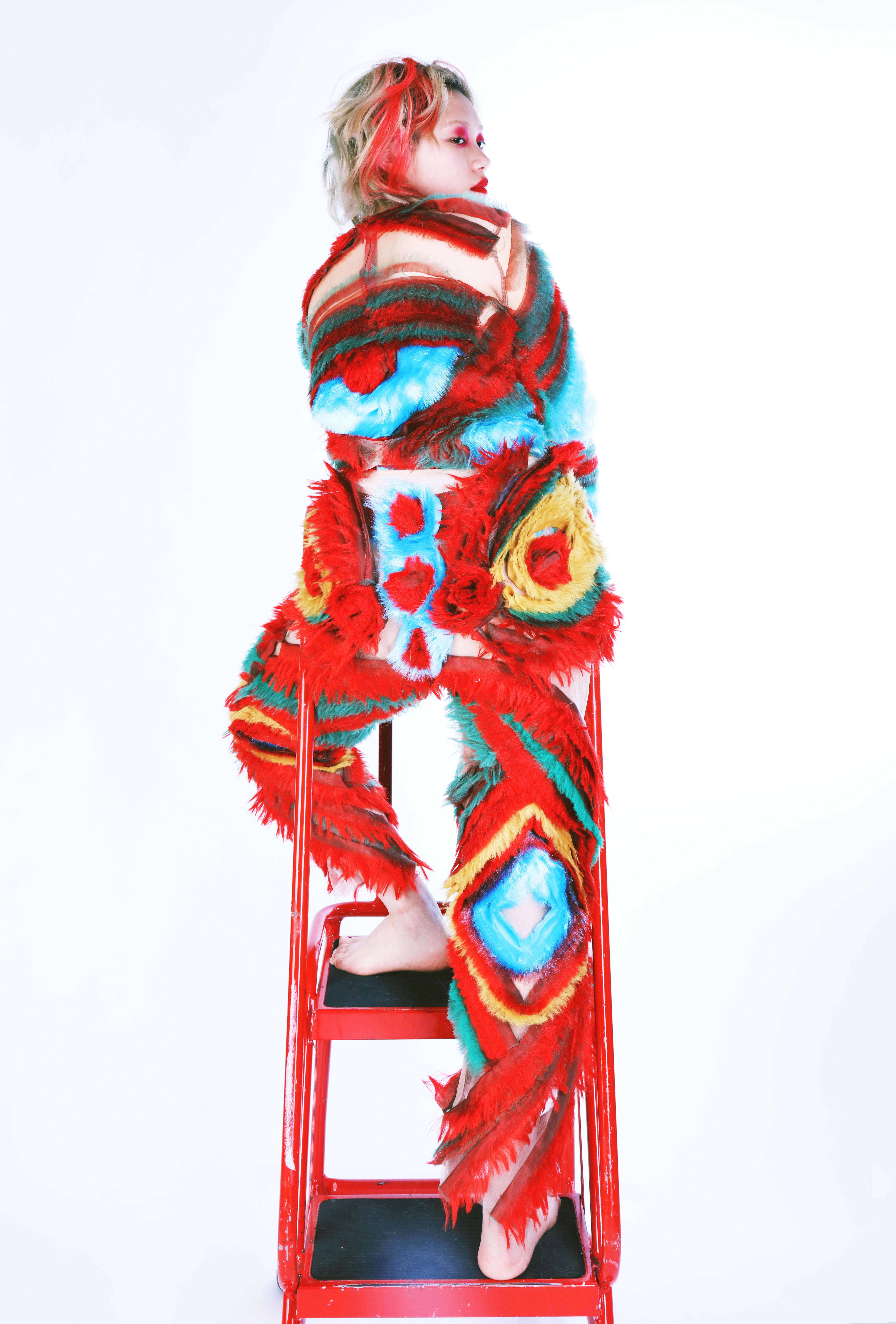 Grad-Dip-FDT-Hong-Zhao-01-model-on-ladder.JPG