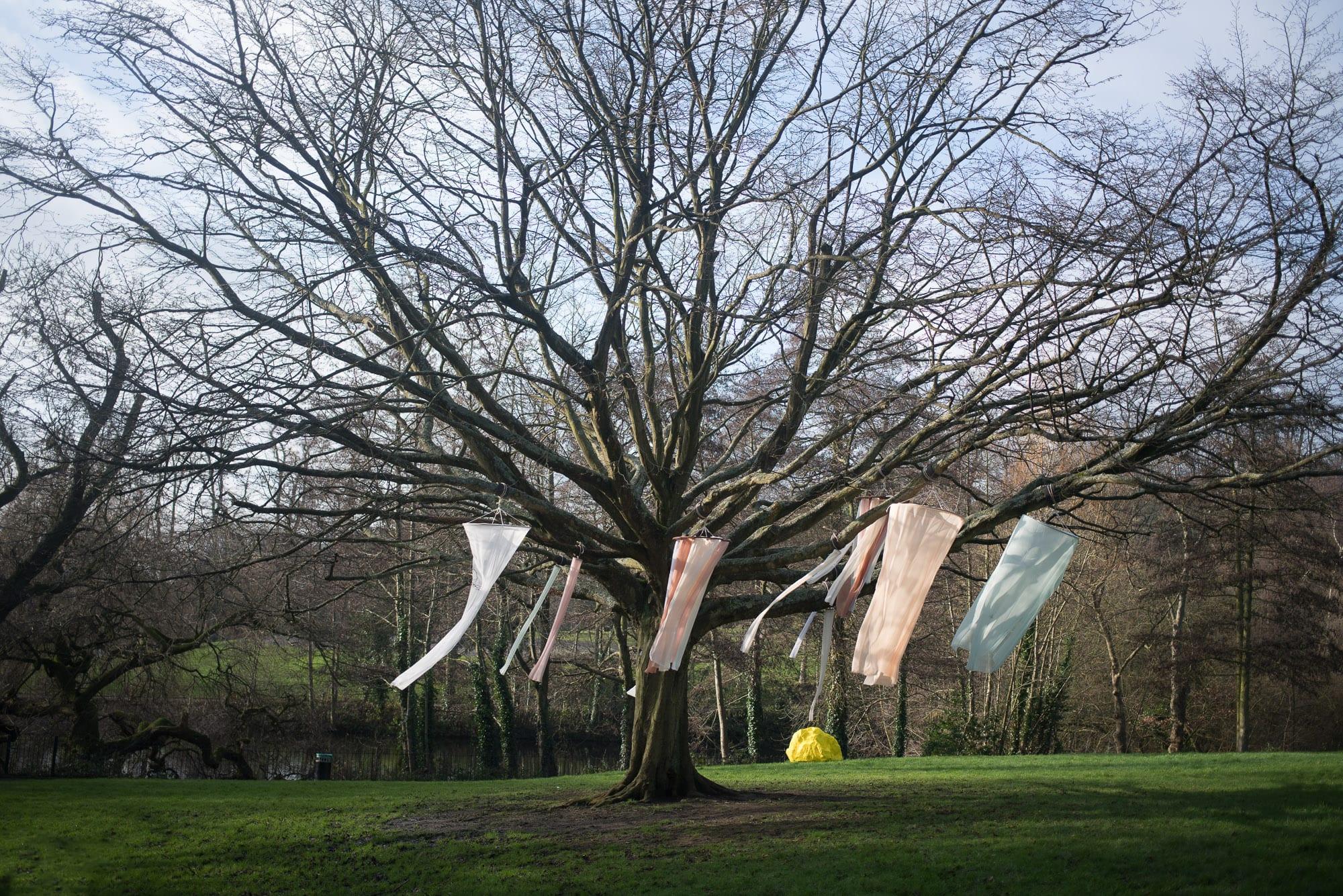 Foundation-Fine-Art-Park-2018-Lara-Silva-photo-by-Tim-Meara.jpg