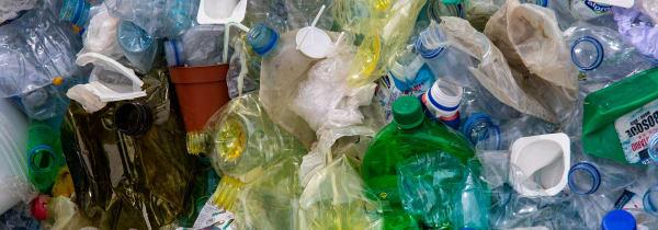 Photo of used plastic bottles
