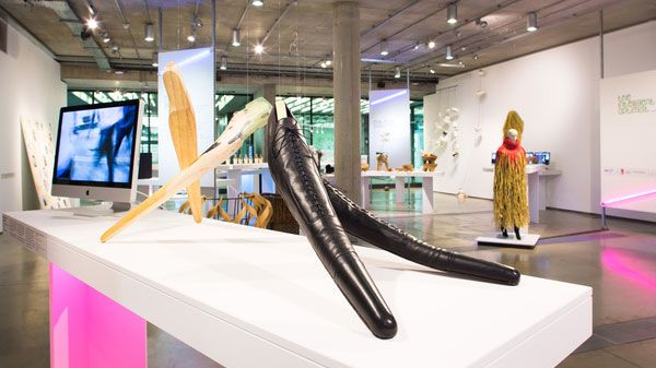 A very long shoe on display in the Lethaby Gallery