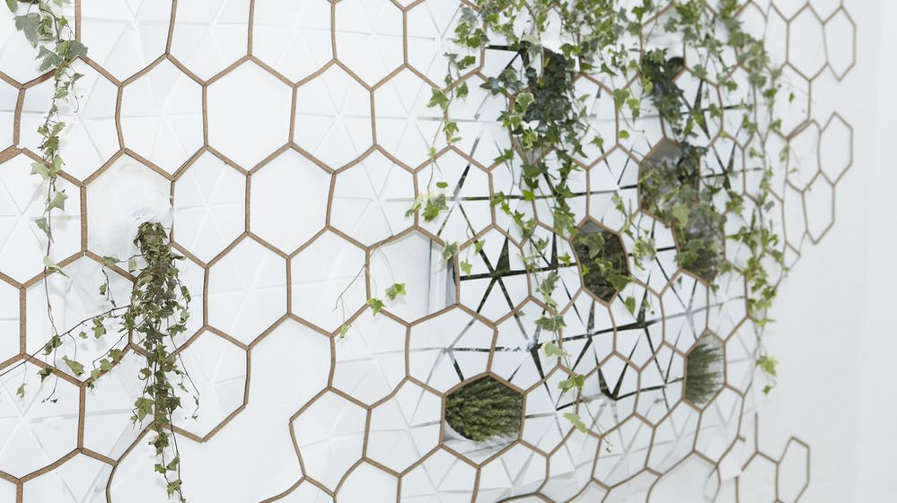 Cork Structure with Plants installation