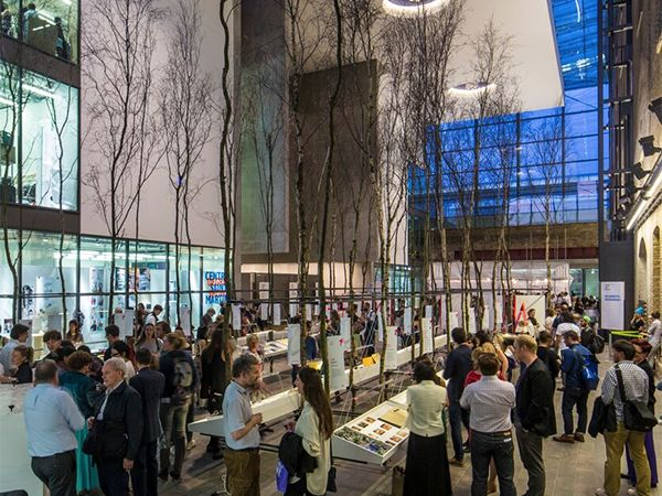 People viewing an installation which features rows of tall trees