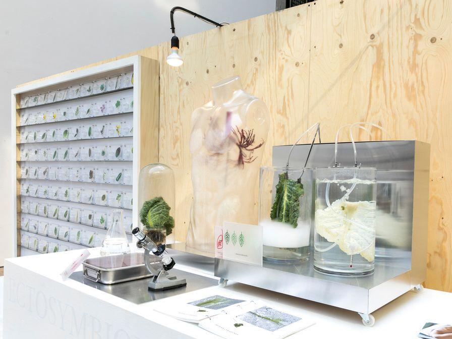 Scene showing scientific equipment and plants