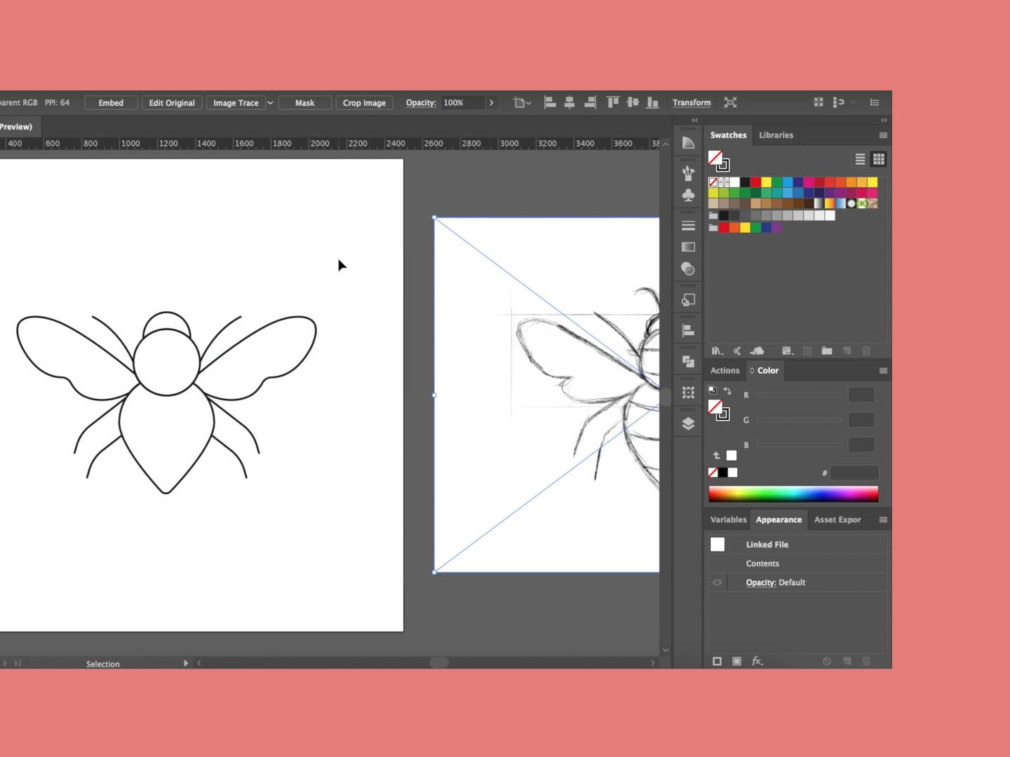 a screenshot of a adobe illustrator document containing an illustration of a moth