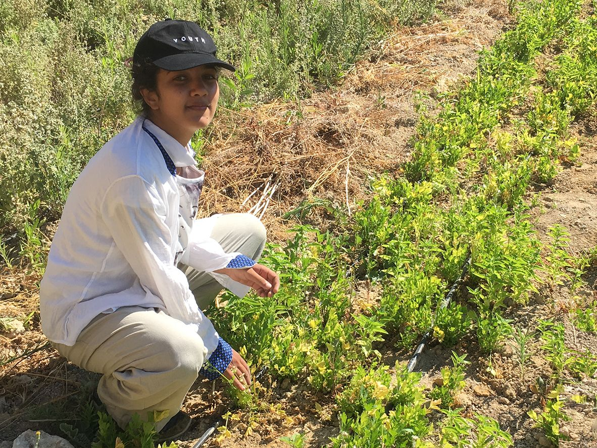 Mona Rathi sitting in a field in Jordan
