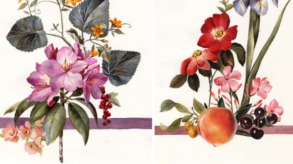 3 paintings of flowers and fruit by Nicola Pasterfield.
