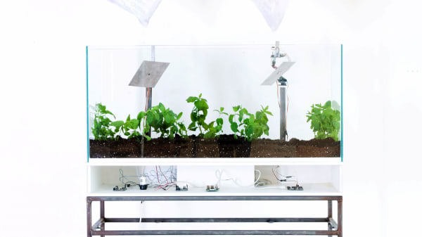 A scientific looking planter filled with different plants, wires and silver panels