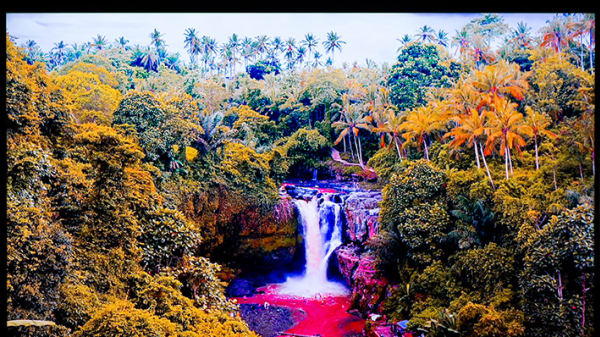 A waterfall amongst tropical trees in a jungle, the colours have been filtered and look unnatural and psychedelic.