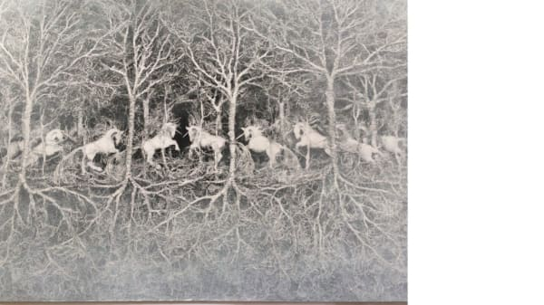 Unicorns in a forest