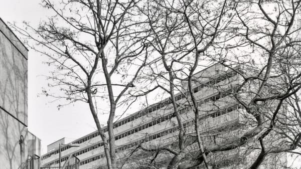 Black and white photograph of the Heygate Estate in Elephant and Castle - showing a concrete building and view with leafless trees.