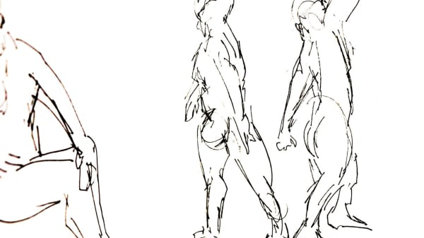 ANATOMC3AL Anatomical Portrait Drawing