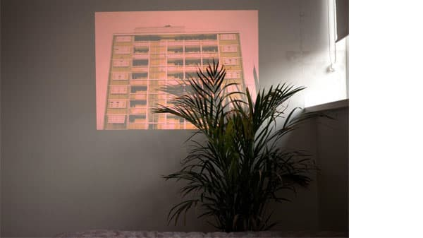 A pink projection against a wall with a plant in the foreground