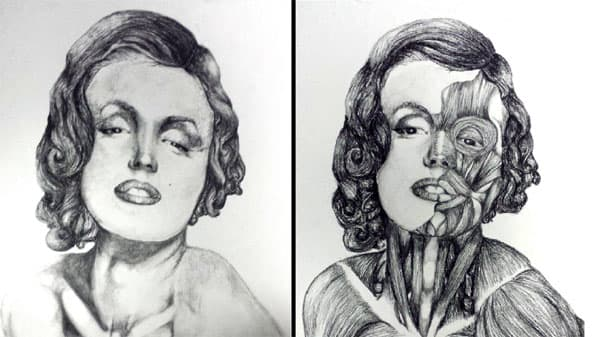 Two drawings of Marilyn Monroe the one on the right with her skin removed