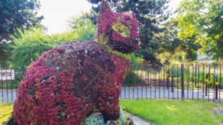A sculpture of a cat made out of plants