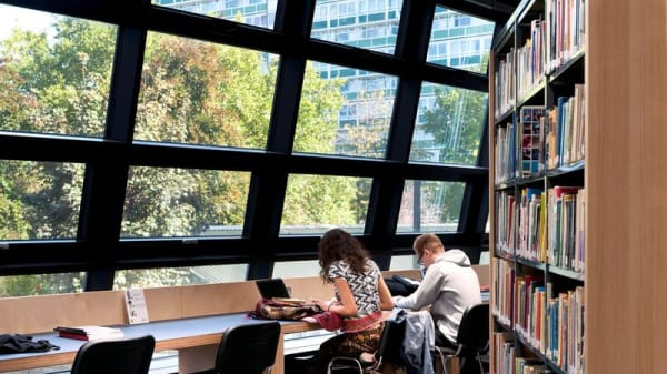 Students studying in library
