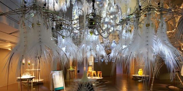 Large chandeliers with white feathers hanging from the ceiling