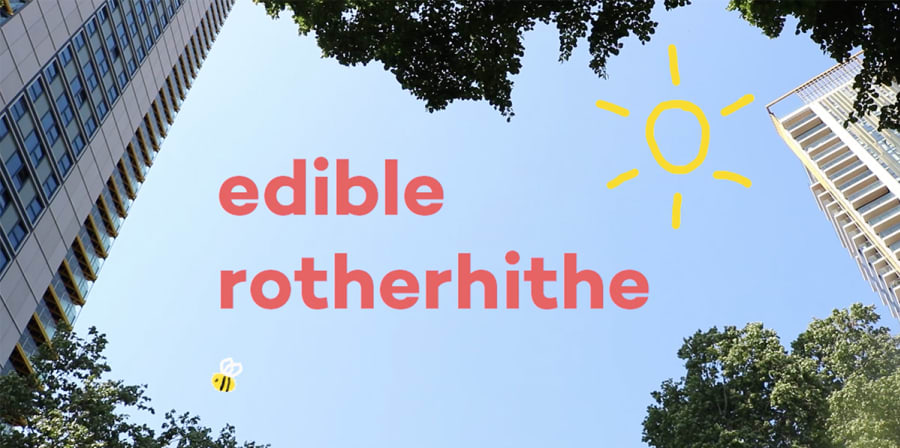 Image depicts a still from the Talent Works promotional film for Edible Rotherhithe, which features a blue sky and an animated bee.