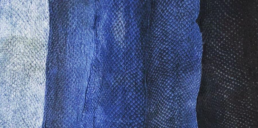 Photograph of dyed textures that look like fish skin
