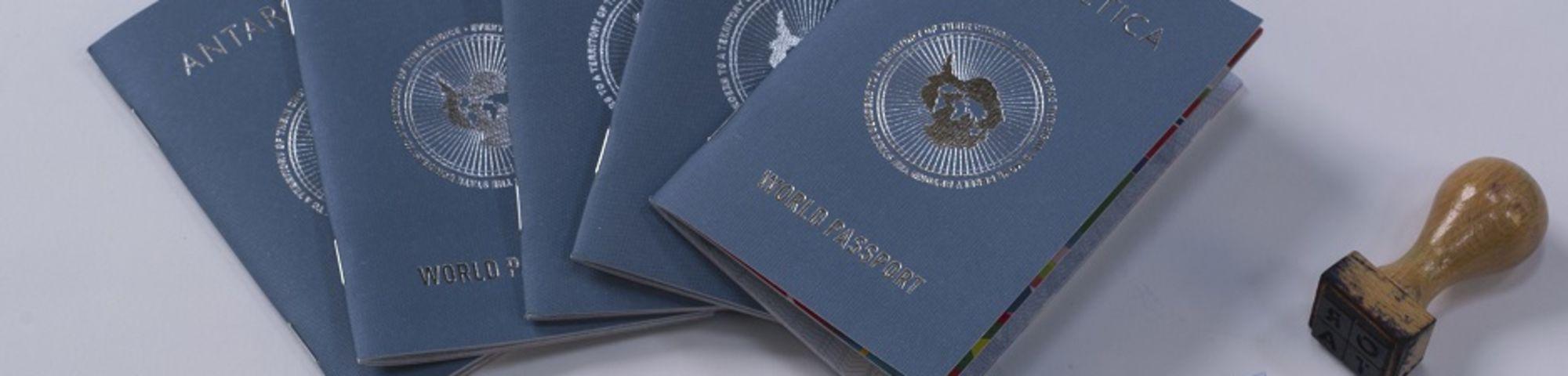5080_Antarctica World Passport Courtesy of Frieze Projects and Studio Orta