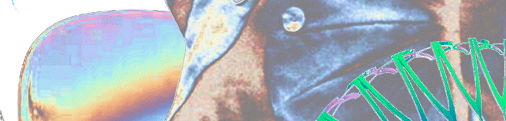 stefan-vidler-750×500
