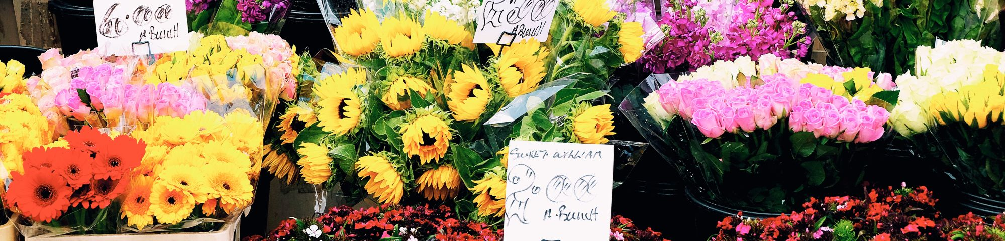 Selection of flowers on sale near Wimbledon