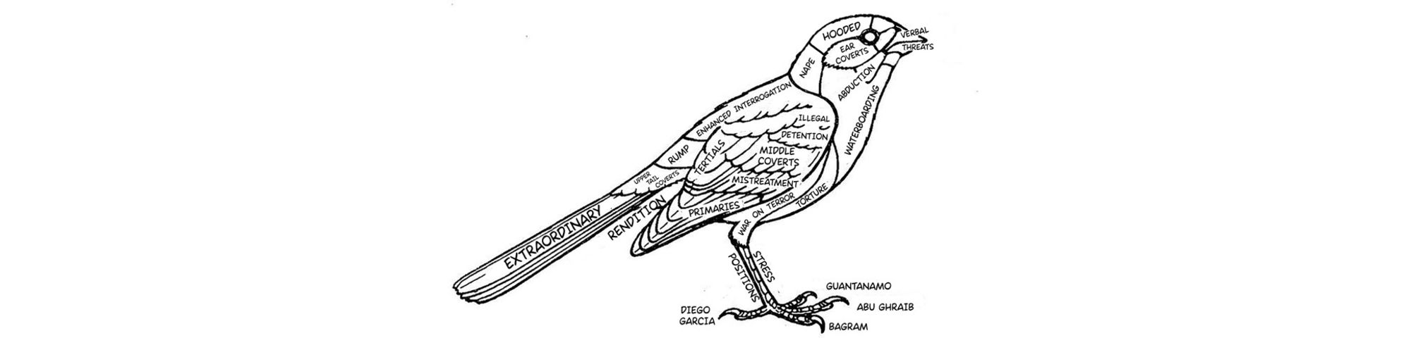 Line drawing of bird in black and white, covered in words like rendition, war on terror, torture.