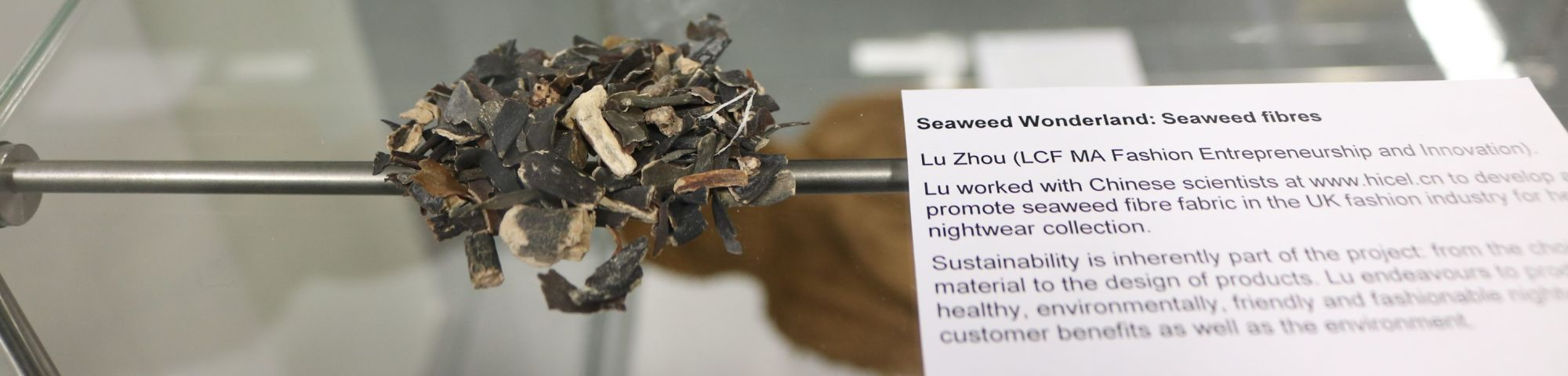 photograph of display cabinet contents and typed description