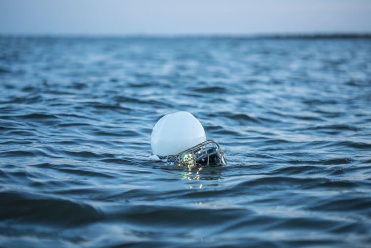 Object floating in sea