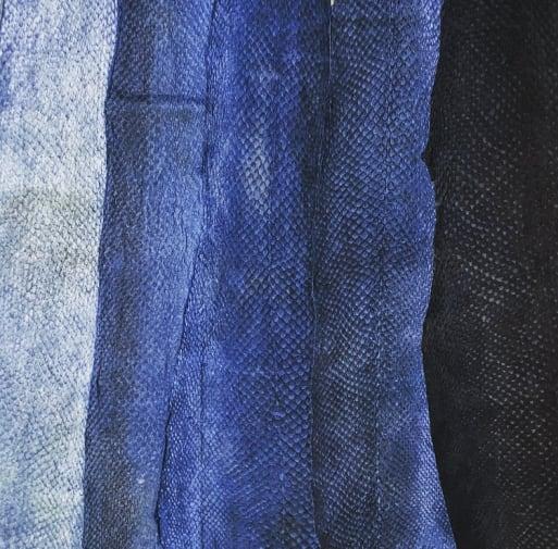 indigo dyed fish skin sample