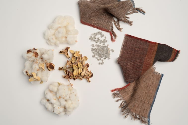 Kala cotton and woven swatches – Prerna Gupta