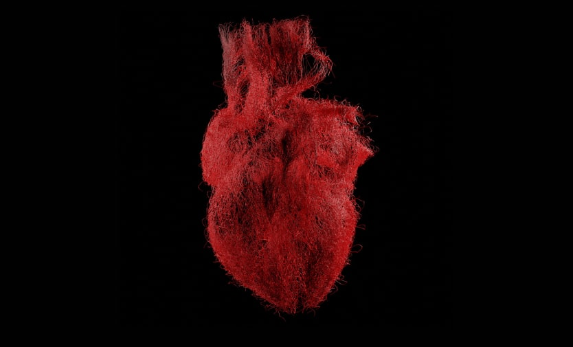 A still of a moving graphic depicting a human heart.