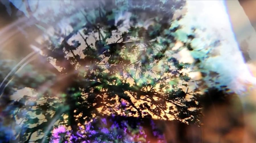 Dimensions, 2015 (frame of the video)
