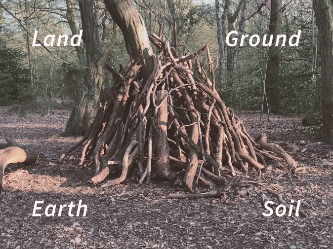Image of tree with text of Land Ground Earth Soil