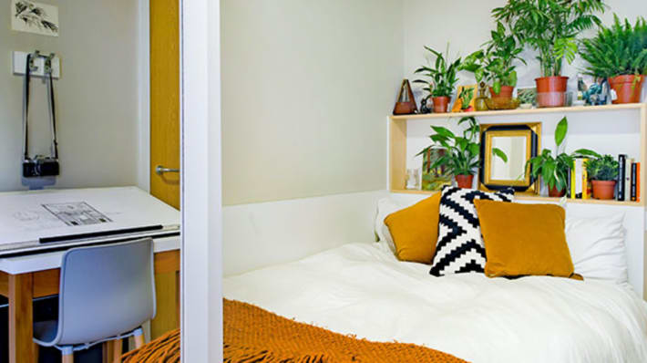 Student bedroom at Sketch House with plants and desk