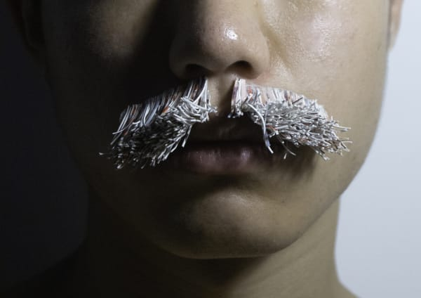 Jiho-Park_-M-is-for-moustache,-will-a-poodle-be-more-attractive-if-it-has-more-hair.jpg