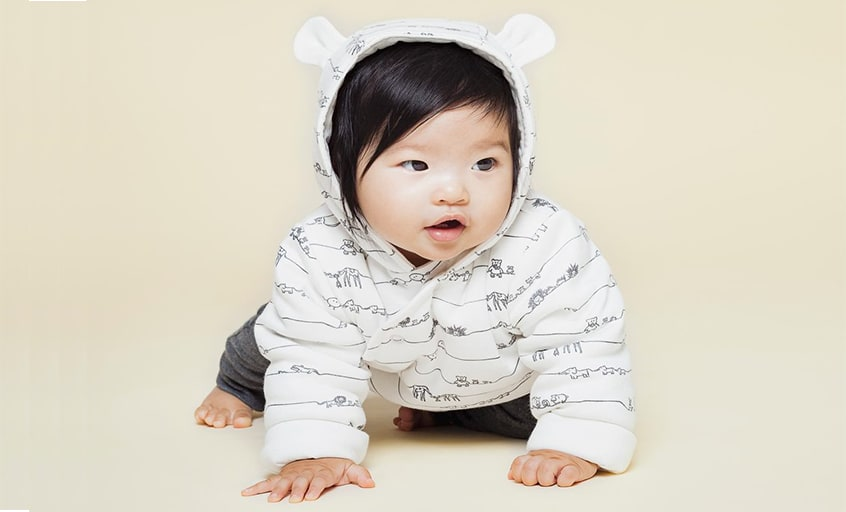 Baby modelling Animal Family Collection piece