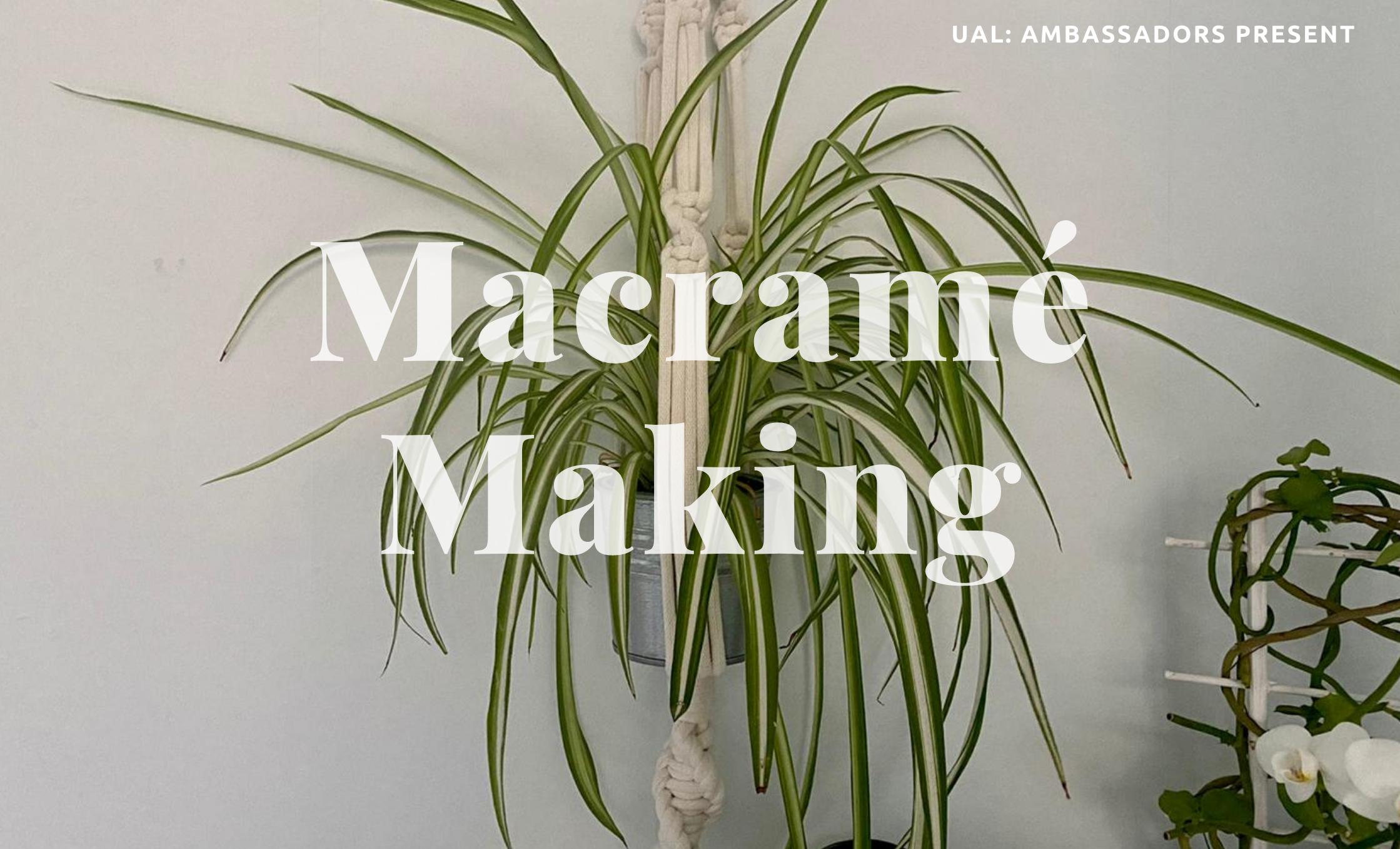macrame Workshop Text and plant hanger