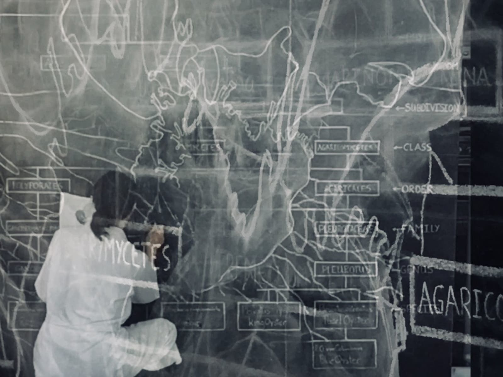Black and white image of a figure drawing onto a blackboard in chalk