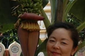 Dr Yuko Kikuchi