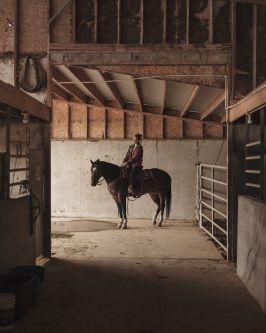 Image from Chris Bethell's series Blue Velvet
