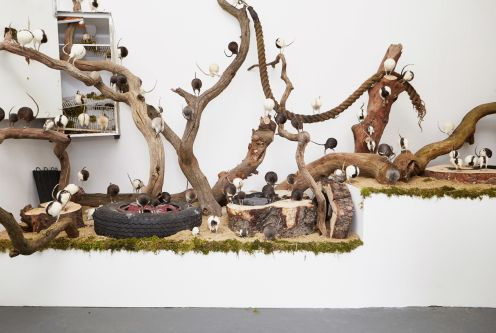 Installation with tyres, trees and stuff animals by Erin Ross.
