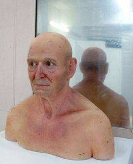 Model of final man