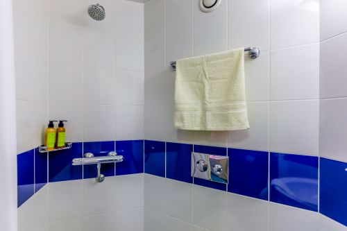 Photo of shower in a bathroom