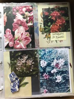 Photo album with floral imagery