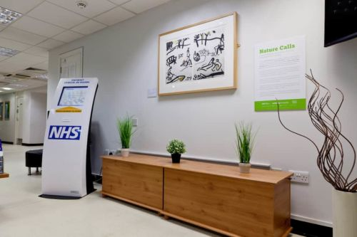 A NHS waiting room installed with Nature Calls artwork