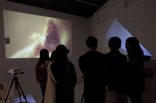 People in room watching projected film depicting an eye