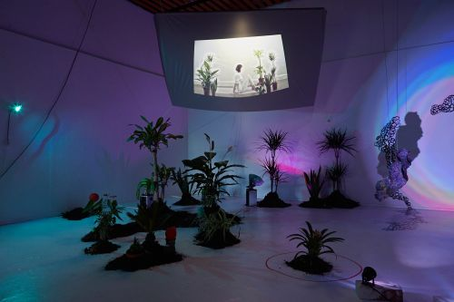 Installation work by Jess Bryant featuring performance video, plants and lighting projections.